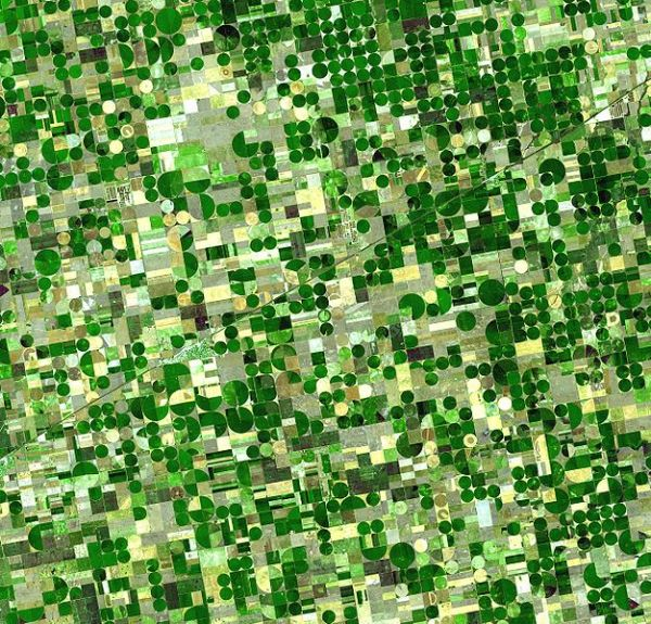 Satellite image of Kansas crop fields. Credit: NASA.