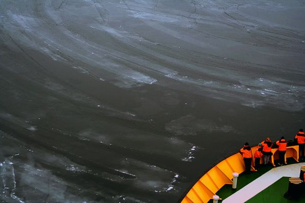 Frazil or grease ice, an early stage in the formation of sea ice. Photo by Mila Zinkova, courtesy Wikimedia Commons.