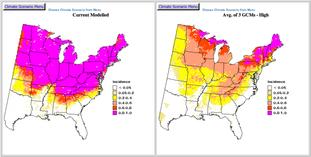 American goldfinch abundance change map.: USDA/Forest Service. Matthews, S.N., L. R. Iverson, A.M. Prasad, A. M., and M.P. Peters. 2007-ongoing. A Climate Change Atlas for 147 Bird Species of the Eastern United States [database].