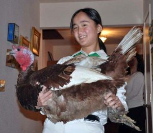 Janelle Thode, 16, shows off one of her turkeys: Courtesy Slow Foods Russian River