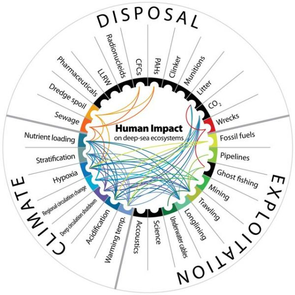 Synergies among anthropogenic impacts on deep-sea habitats. The lines link impacts that, when found together, have a synergistic effect on habitats or faunal communities. Credit: Ramirez-Llodra E, et al. PLoS ONE. DOI:10.1371/journal.pone.0022588
