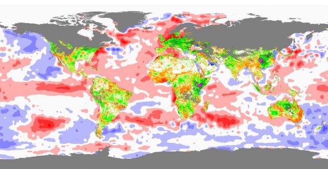 Sea-Surface Temperate (SST) (oceans) and Normalized Dirrerence Vegetation Index (NDVI) (land) observed globally for January 2007: NASA/Goddard Space Flight Center Scientific Visualization Studio.