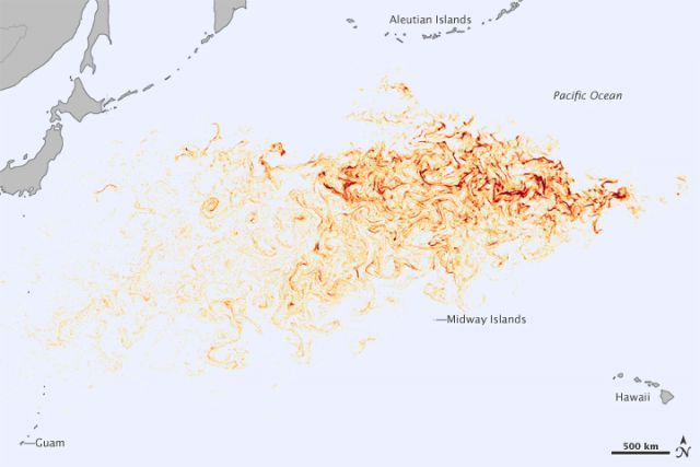 Tsunami debris track.: NASA Earth Observatory image by Jesse Allen, using model data courtesy of Jan Hafner, International Pacific Research Center.