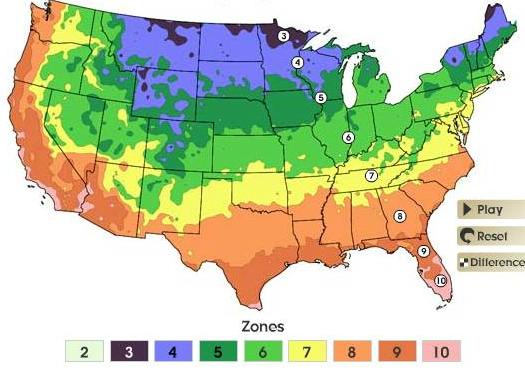 2006 USDA plant hardiness map: USDA