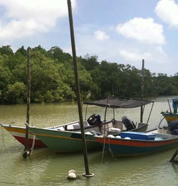 Fishing boats on the Baluk River, just outside of Kuantan