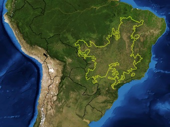 Brazil's cerrado, outlined: both the globe's most biodiverse savanna, and industrial agriculture's frontier.. : Pfly/Wikimedia Commons