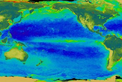 El Niño as seen through chlorophyll measurements. Credit: NASA/Goddard Space Flight Center, The SeaWiFS Project and GeoEye, Scientific Visualization Studio.