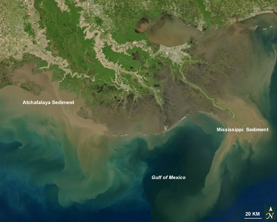 Sediment-laden water pours into the Gulf of Mexico from the Mississippi and Atchafalaya Rivers. Credit: Norman Kuring, Ocean Color Team.