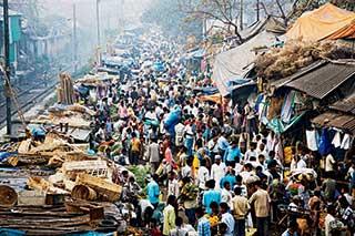 Kolkata's teeming Malik Ghat wholesale flower market.