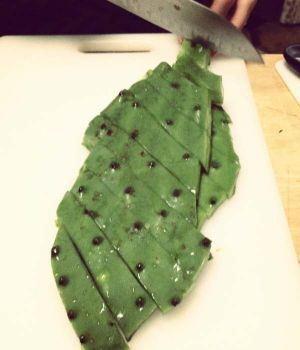 Nopal, mid chop: Photo by Ian Gordon