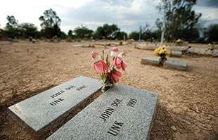 Anonymous graves for border crossers at Pima County's Evergreen Cemetery.