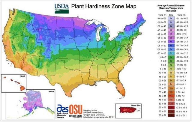 2012 plant hardiness zone map: USDA and Oregon State University